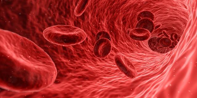 Cholesten: Pomáha udržať správnu hladinu cholesterolu v krvi