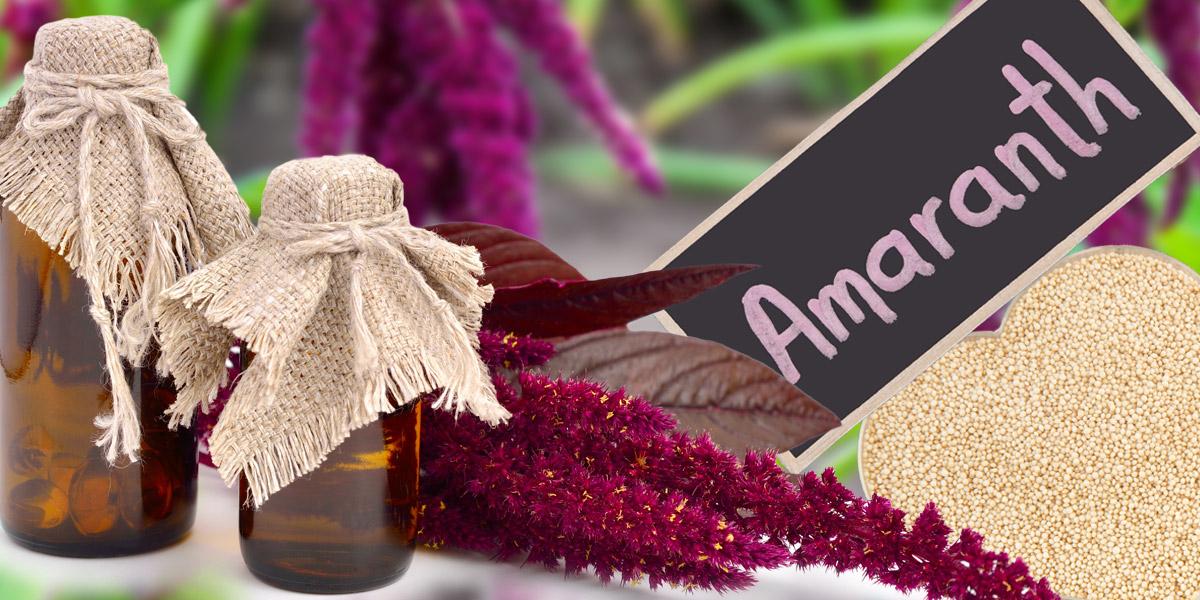 amarantovy olej
