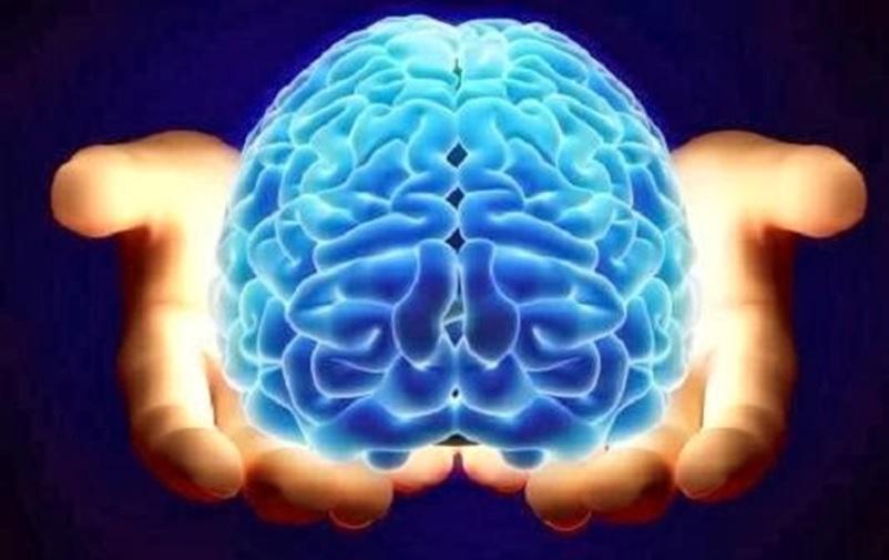 Pyridoxín myseĽ