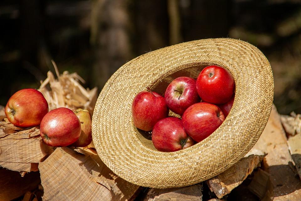 jablcny ocot