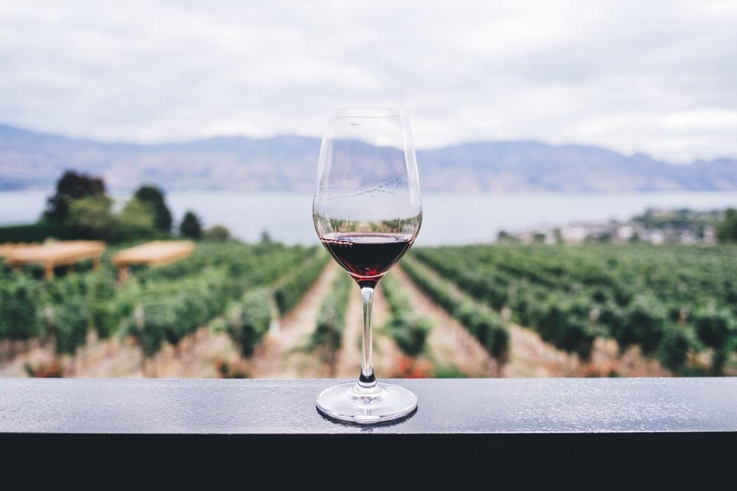 Pereg víno – ríbezľové sladké pokušenie